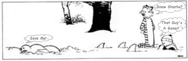 Calvin & Hobbes Christmas !!